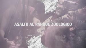 asalto al parque zoologico