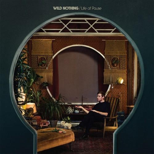 wild-nothing2