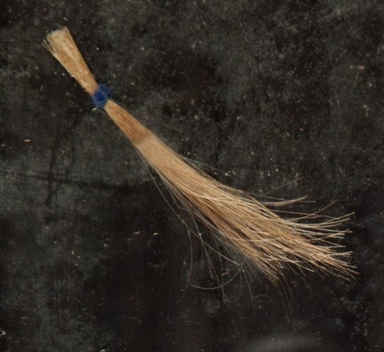 david bowie pelo